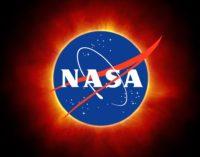 NASA To Launch E. Coli Into Space