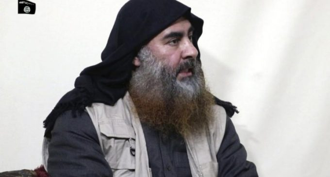 Terrorist ?Baghdadi killed in US raid
