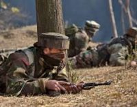 Terrorists kill 3 apple traders in Kashmir valley
